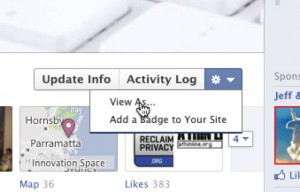 Facebook View As Option