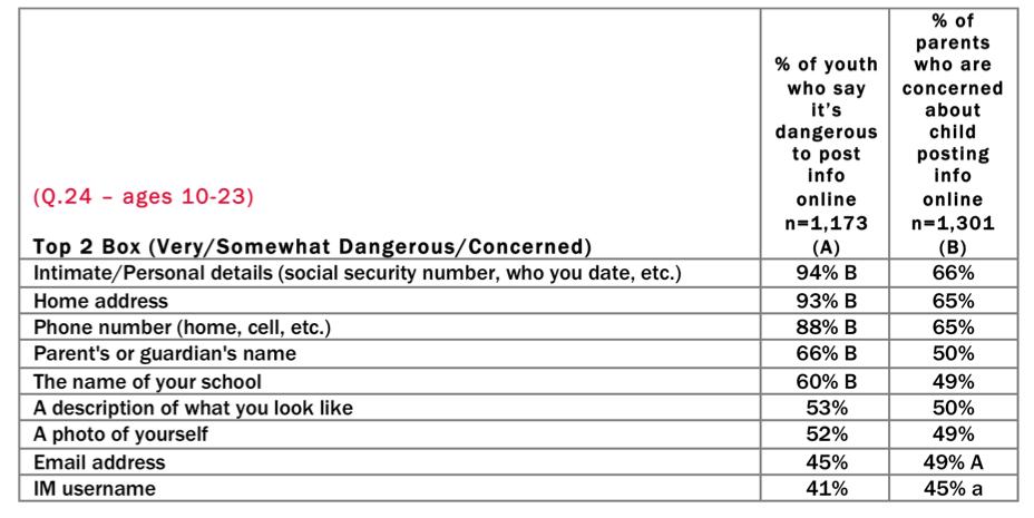 McAfee Digital Deception Study 2013